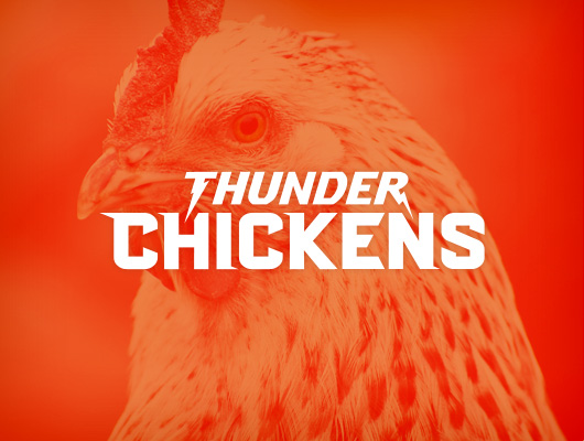 Thunder Chickens / Logo design
