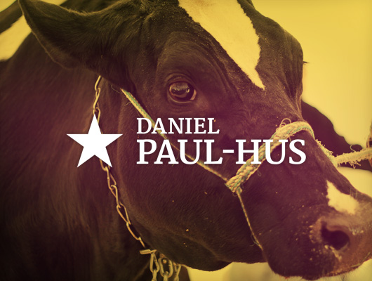 Daniel Paul-Hus / Web design and photography