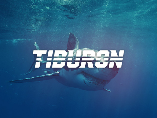 Tiburon / Logo design