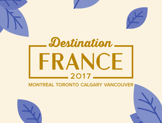 Design de la campagne pour Destination France 2017
