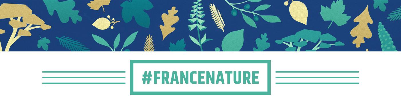 Top Banner Design - France Nature