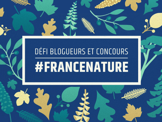 Branding and graphic design. France Nature.